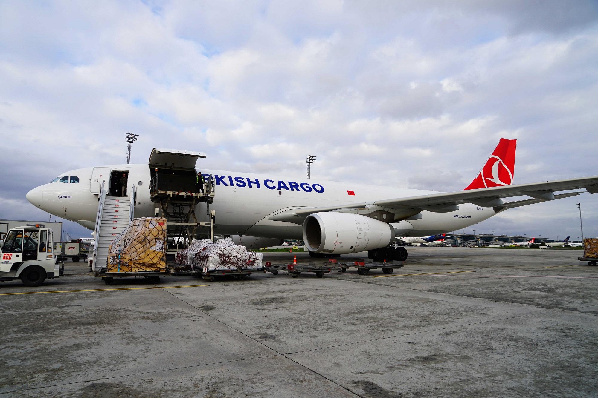 Turkish Cargo перевезла львят и находящихся под угрозой исчезновения пингвинов в их новый дом