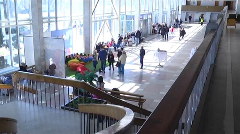 Первый самолет из Ровно вылетел в Египет