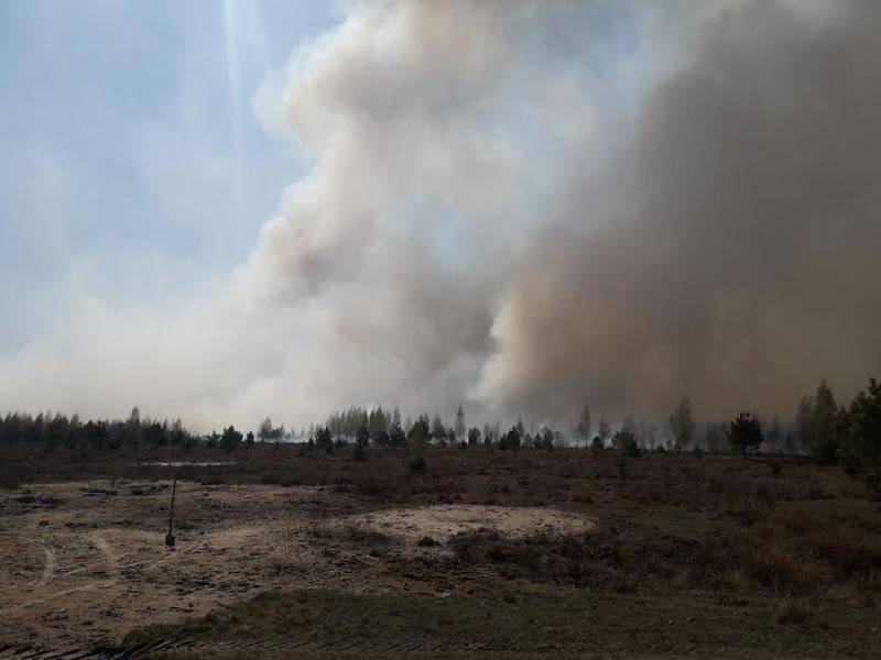 В Житомирской области авиация тушит пожары