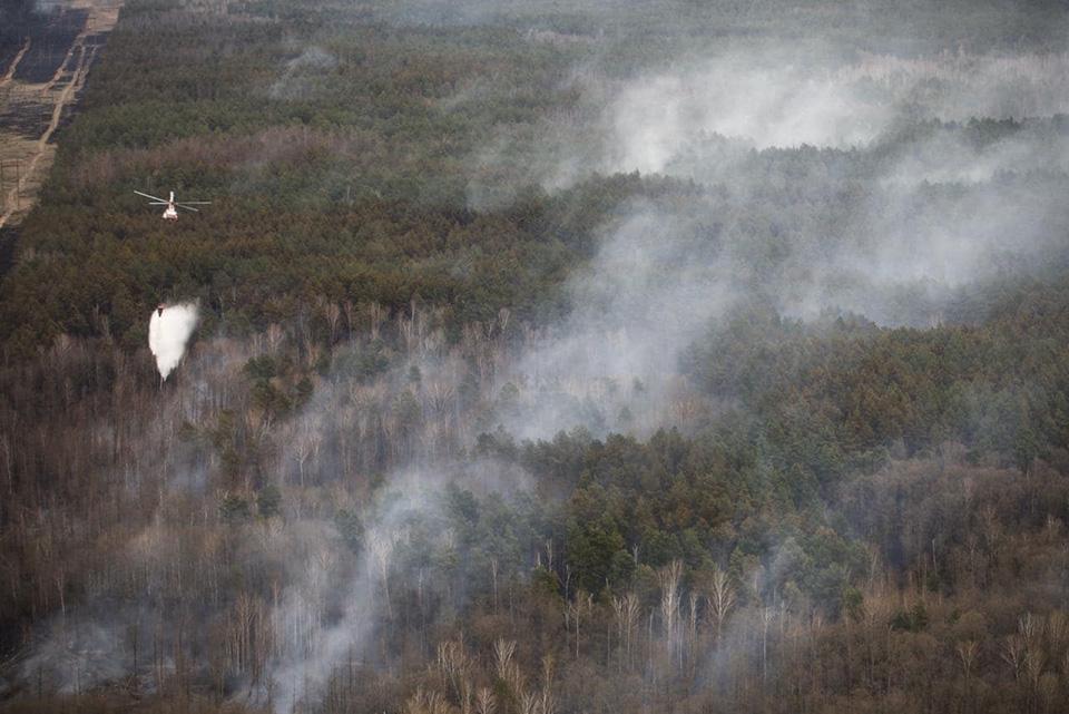 Пожар в Чернобыльской зоне удалось загасить