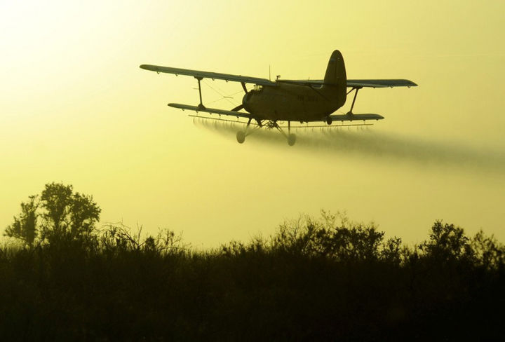 Авиация поможет иммунизировать зверей