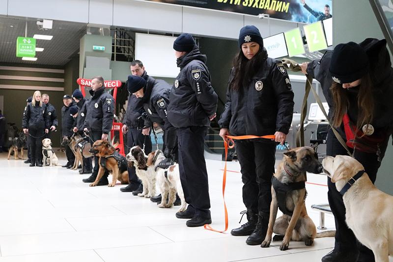 10 служебных собак искали наркотики в аэропорту Киев