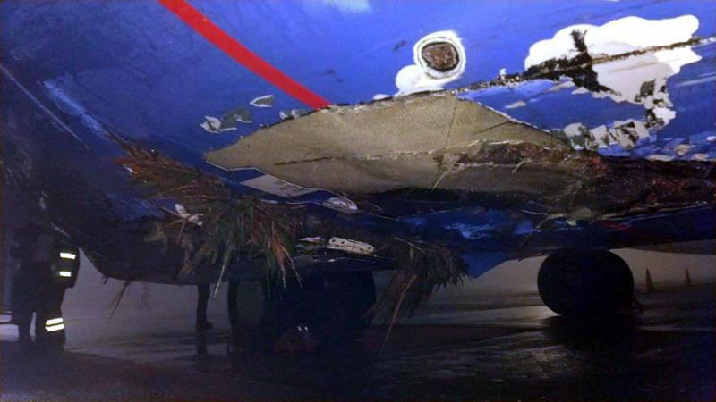 Авиационное происшествие в Борисполе